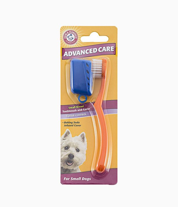Arm Hammer Small Breed Toothbrush And Cover
